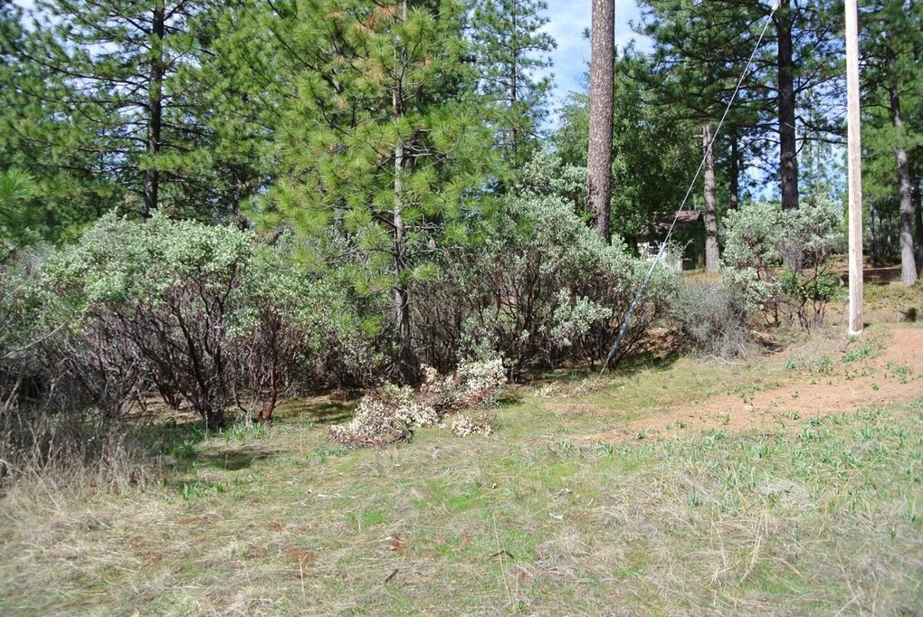 1 Todd Valley Rd Foresthill, CA 95631