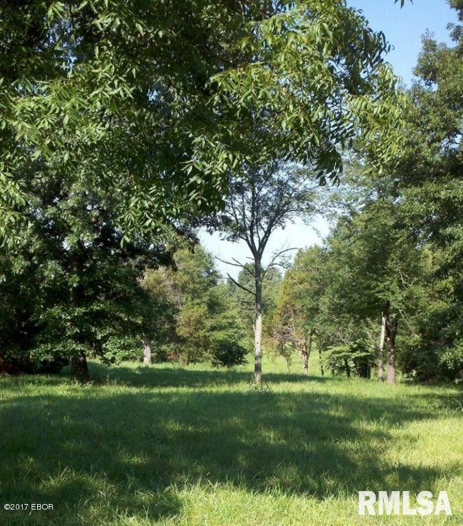 Starvation Acres Rd Lot 14 Carbondale, IL 62903