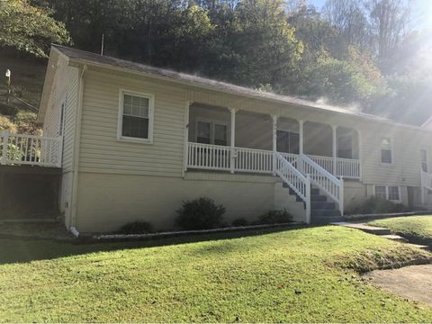 Photo of 445 Buckeye Hollow Rd, Saltville, VA 24370