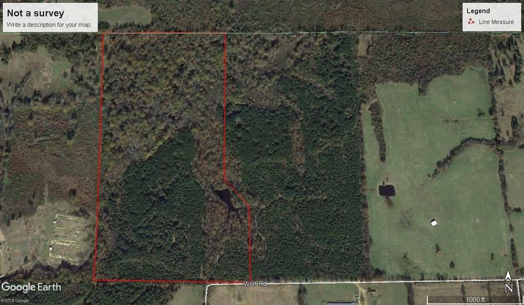 Wolf Rd, Gilmer, TX 75644 - realtor.com® Image Of Gilmer Texas Map on map of gruver texas, map of jasper texas, map of houston texas, map of iredell texas, map of camp county texas, map of graford texas, map of downtown fort worth texas, map of orange texas, map of lewisville texas, map of glenn heights texas, map of goodfellow afb texas, map of gregg county texas, map of weatherford texas, map of holly lake ranch texas, map of lincoln texas, map of texas texas, map of canton texas, map of center texas, map of fentress texas, map of grand saline texas,