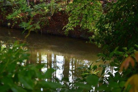 201 Canal St, Bonneau, SC 29431