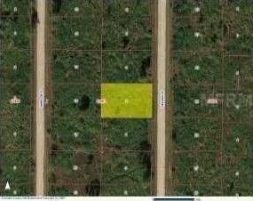 Lot 40 Sw Alvarez Rd Fl City, Other, FL 34431