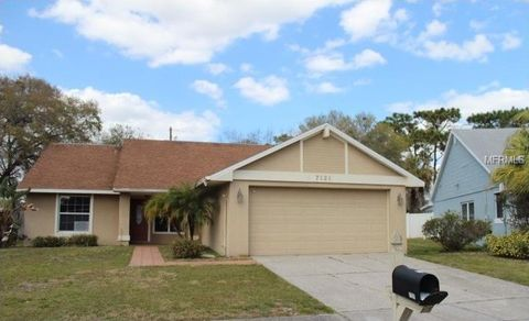 7121 Hollowell Dr, Tampa, FL 33634