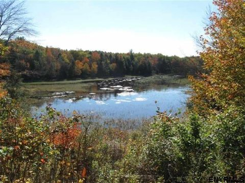 Photo of Calvin Cole Rd Lot B, Stephentown, NY 12168