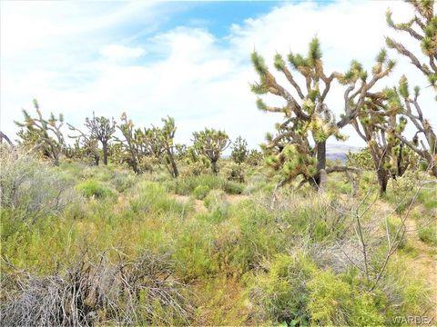 Photo of Silver Lode Dr Lot 159, Dolan Springs, AZ 86441