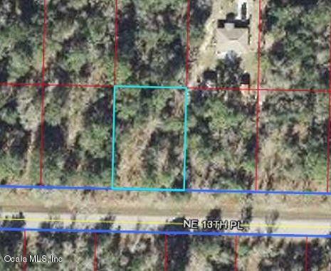 Ne 13 Pl Williston FL 32696 Land For Sale and Real Estate