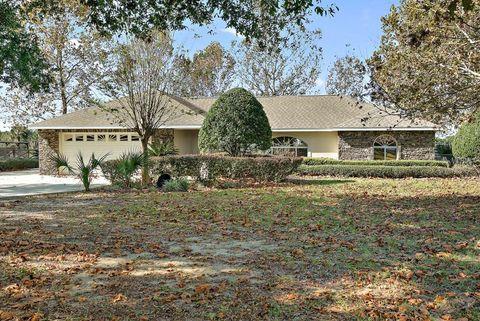 19654 Twin Ponds Rd, Umatilla, FL 32784