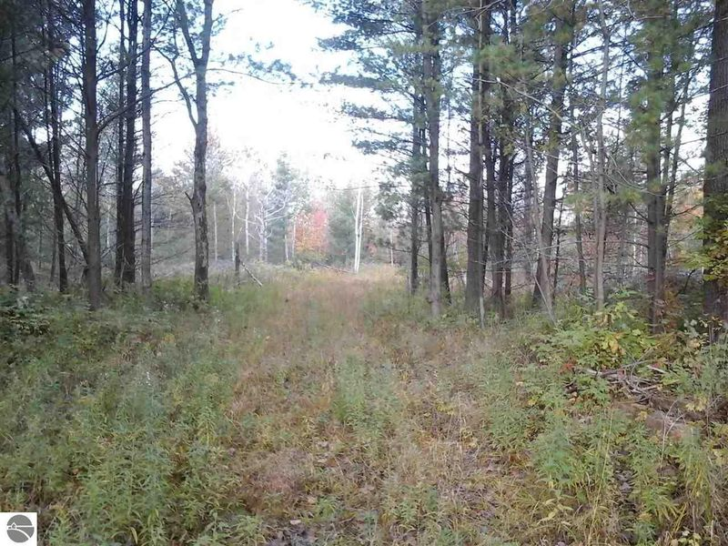 10995 Isabella County Line Rd, Coleman, MI 48618 - Land ...