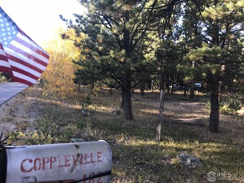 Photo of 182 County Road 84 W, Allenspark, CO 80510