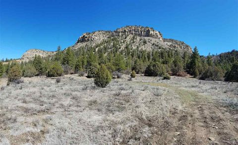 Photo of County Road 352, Chama, NM 87528