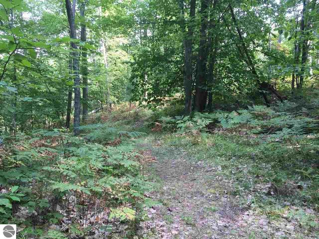 karlin rd interlochen mi 49643 land for sale and real estate listing