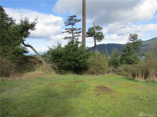 1 village view rd orcas island wa 98245 home for sale for Homes for sale orcas island wa