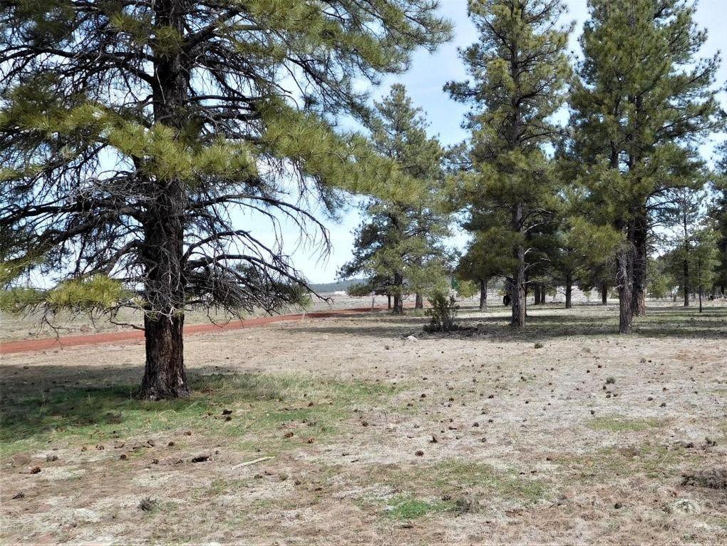 3095 E Pinetree Dr, Williams, AZ 86046