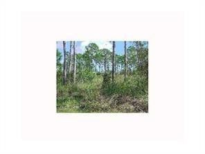 Photo of Lot 04 Ne 154 Ter Fl City, FL 32696
