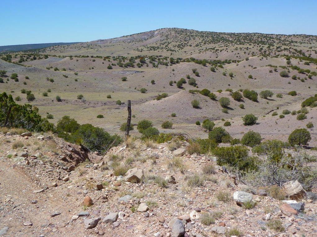 2009 Acounty Rd # 5338, Concho Valley, AZ 85924