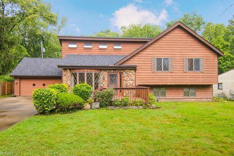 Solon Oh Real Estate Solon Homes For Sale Realtor Com 174
