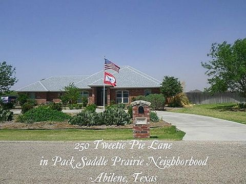 Photo of 250 Tweetie Pie Ln, Abilene, TX 79602