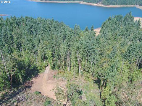 Photo of Peninsula Rd, Fall Creek, OR 97438