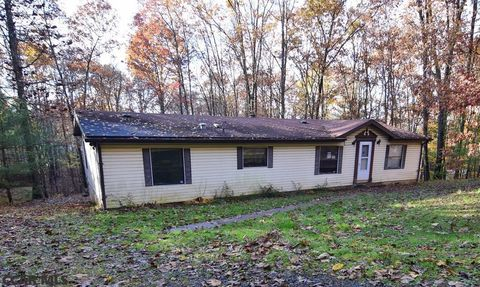 Photo of 234 Bald Eagle Forest Rd, Blanchard, PA 16826