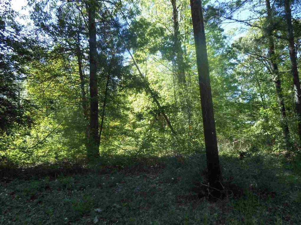 437 Pine Cone Ln, Hemphill, TX 75948
