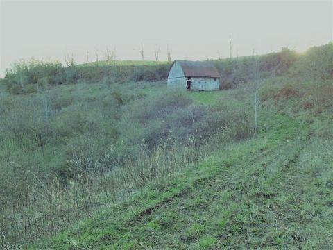 1501 Vicars Rdg, Gandeeville, WV 25243