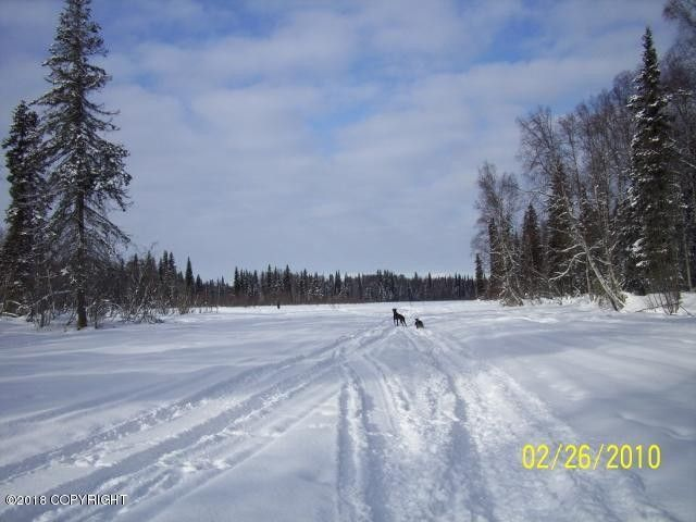 C006 E Section Line Trl, Talkeetna, AK 99676