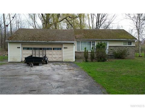 singles in knowlesville Browse our knowlesville, ny single-family homes for sale view property photos and listing details of available homes on the market.
