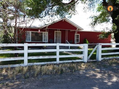 48 A The Ln, Reserve, NM 87830
