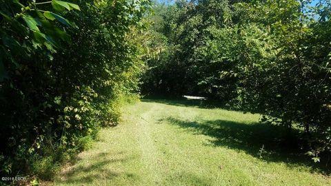 1599 Shiloh Rd, Mounds, IL 62964