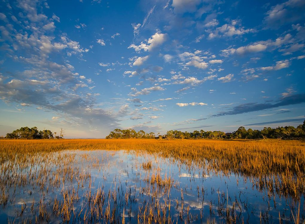 324 Moon Tide Ln Kiawah Island Sc 29455 Land For Sale And Real