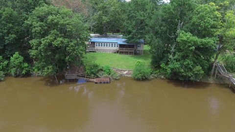 Waterfront Homes for Sale in Lumber City, GA - realtor com®