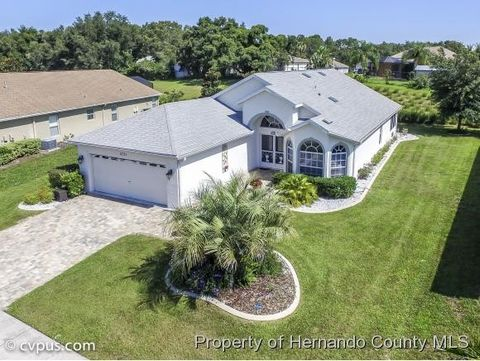11751 New Britain Dr, Spring Hill, FL 34609