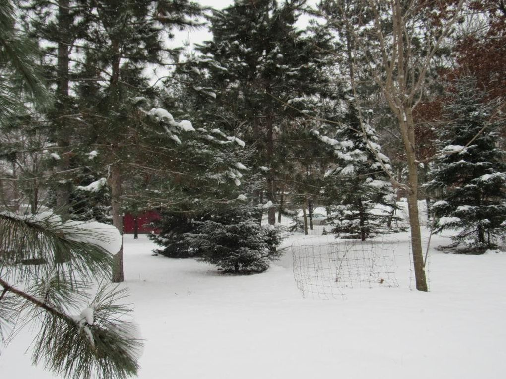 x 12th newport mn 55055 land for sale and real estate listing