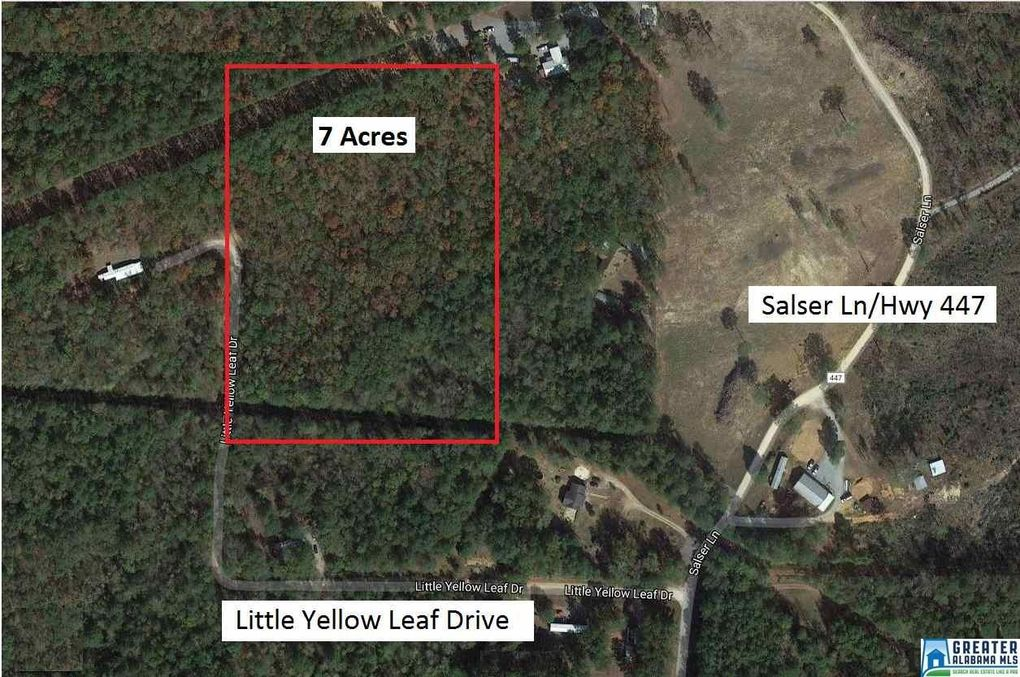 Little Yellow Leaf Dr, Chelsea, AL 35051
