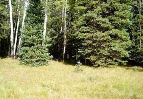 1820 Spruce Rd, Cimarron, CO 81220