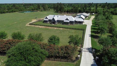 323 High Meadow Ranch Dr, Magnolia, TX 77355