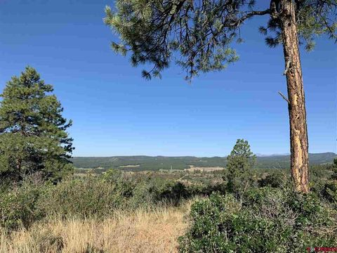 Photo of 1619 Beaver Creek Ranch Dr, Bayfield, CO 81122