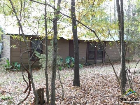 Photo of 823 County Road 3324, Pittsburg, TX 75686