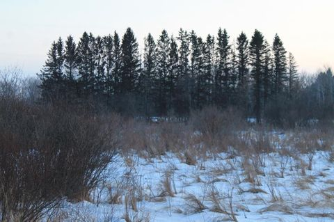 Photo of County 80 St, Eagle Valley Township, MN 56440