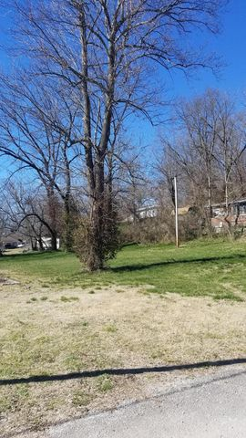 Photo of 206 College St, Crane, MO 65633