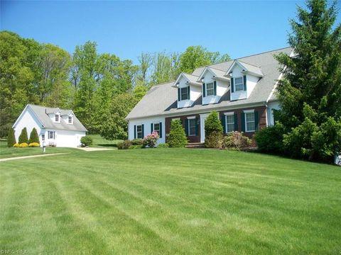 11145 Bain Farm Ct, Concord, OH 44077