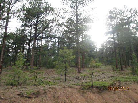 45 Gatewood Ln, Pine, CO 80470