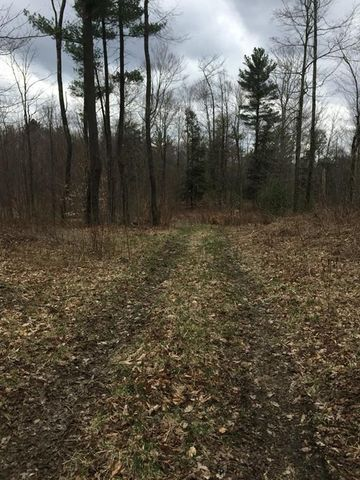 Photo of S Beech Plain Rd, Sandisfield, MA 01255