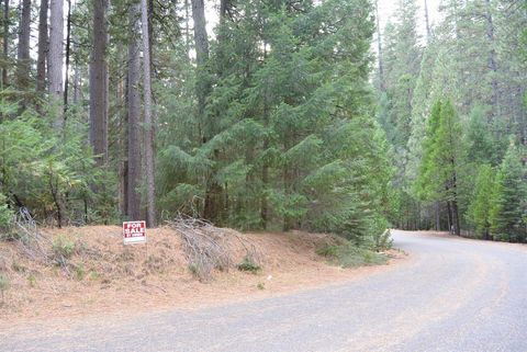 5350 Wooded Glen Rd, Grizzly Flats, CA 95636