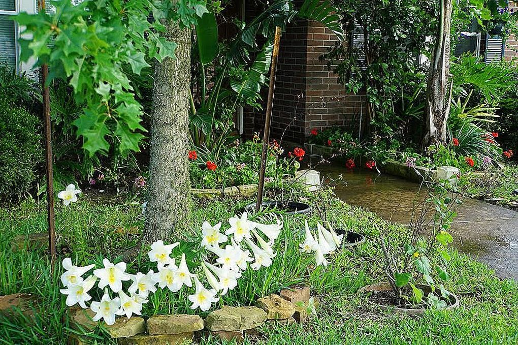 11930 Longwood Garden Way, Houston, TX 77047 - realtor.com®