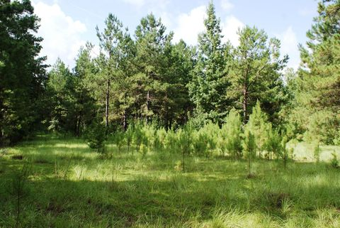 Photo of Highway 113 And Hiter Rd, Dry Creek, LA 70637