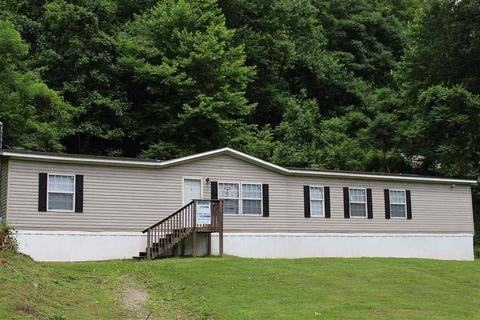 656 Isom Branch Rd, Lake, WV 25121