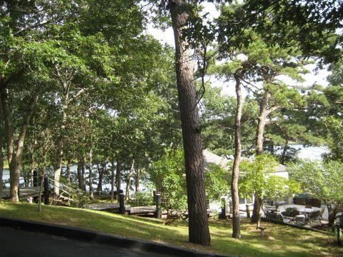 Awe Inspiring Forestdale Ma Real Estate Forestdale Homes For Sale Home Interior And Landscaping Palasignezvosmurscom