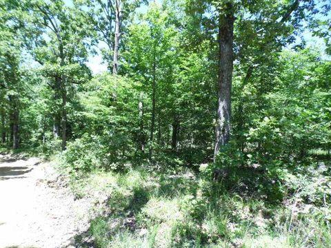 160 Acres Schales, Williford, AR 72482