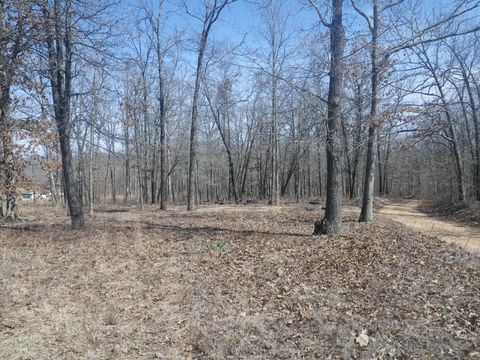 1399 Private Road 335, Willow Springs, MO 65793